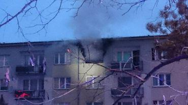 """34-latek wysadził mieszkanie w Poznaniu. """"Gdyby nie wielka płyta, byłaby katastrofa"""""""