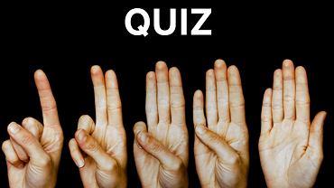 5 szybkich pytań, 5 szybkich odpowiedzi. Niektórzy zdobywają... 0 punktów