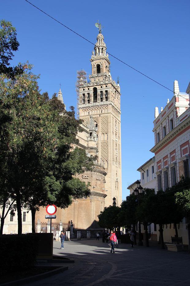 Giralda katedry w Sewilli