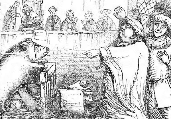 Świnie pożerały niemowlęta, owce uwodziły żonatych mężczyzn. Za co w średniowieczu sądzono zwierzęta?