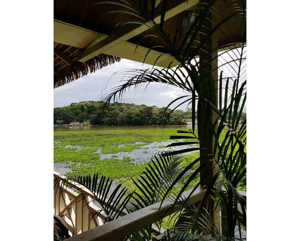Widok na jezioro Gatun