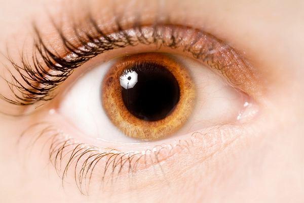 Siła spojrzenia. ''Patrzenie sobie w oczy jest czynnością tak intymną, że bywa nielegalne''