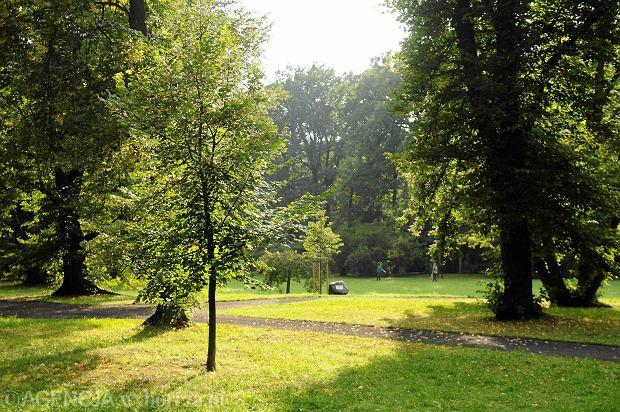 10.06.2014 Wroclaw , Park Szczytnicki .  Fot. Tomasz Szambelan  / Agencja Gazeta  SLOWA KLUCZOWE: park szczytnicki