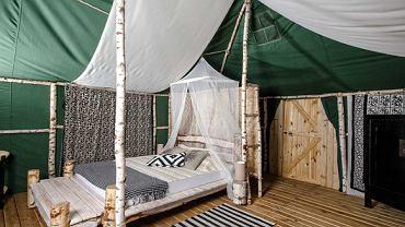 Nowa moda: luksusowe biwaki. Ten ekskluzywny namiot wynajmiesz w Polsce