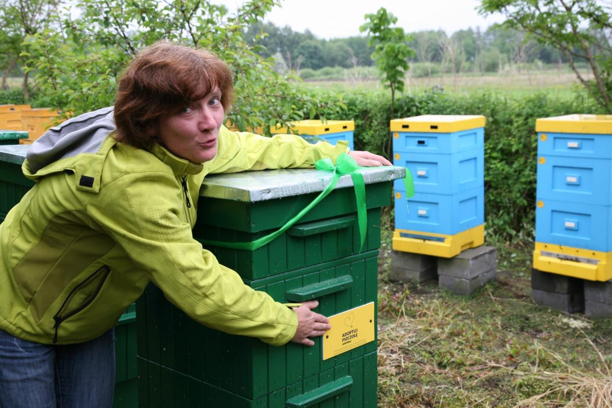 Przekazanie pszczół pszczelarzom z Przyczyny Dolnej