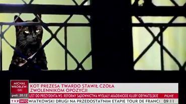 """Też nie mogliśmy uwierzyć, że to pokazali. TVP Info na pasku o """"kocie prezesa"""" i opozycji"""