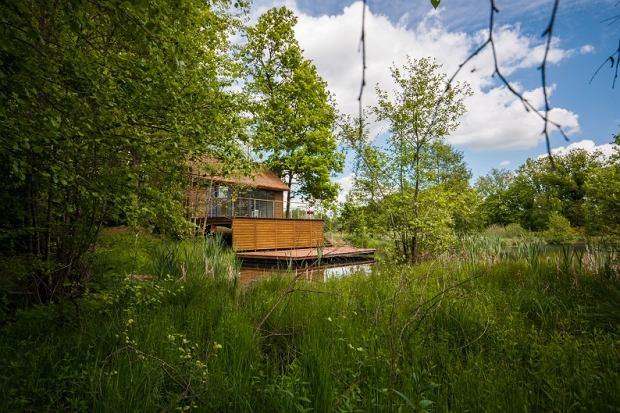 Zielenica - zieleń i przestrzeń