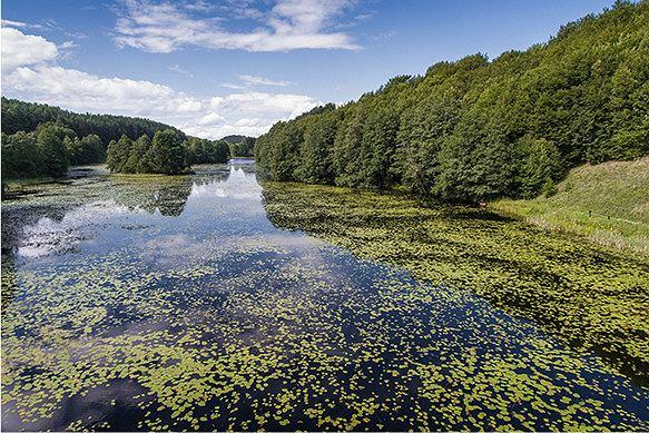 Atutem Suwalszczyzny jest duże zróżnicowanie krajobrazu, fot. iStock