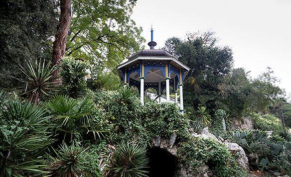 Japończycy wybierają najczęściej drzewka bonsai i bambusa, które przecież i nam nie są obce. Pojawiają się też u nich orchidee czy palmy.