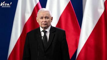 """""""To kwestia serca"""". Kaczyński w filmie o zakazie hodowli zwierząt na futra"""