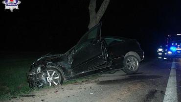 Kierowca opla chciał uniknąć zderzenia z przebiegającą sarną. Nie żyje