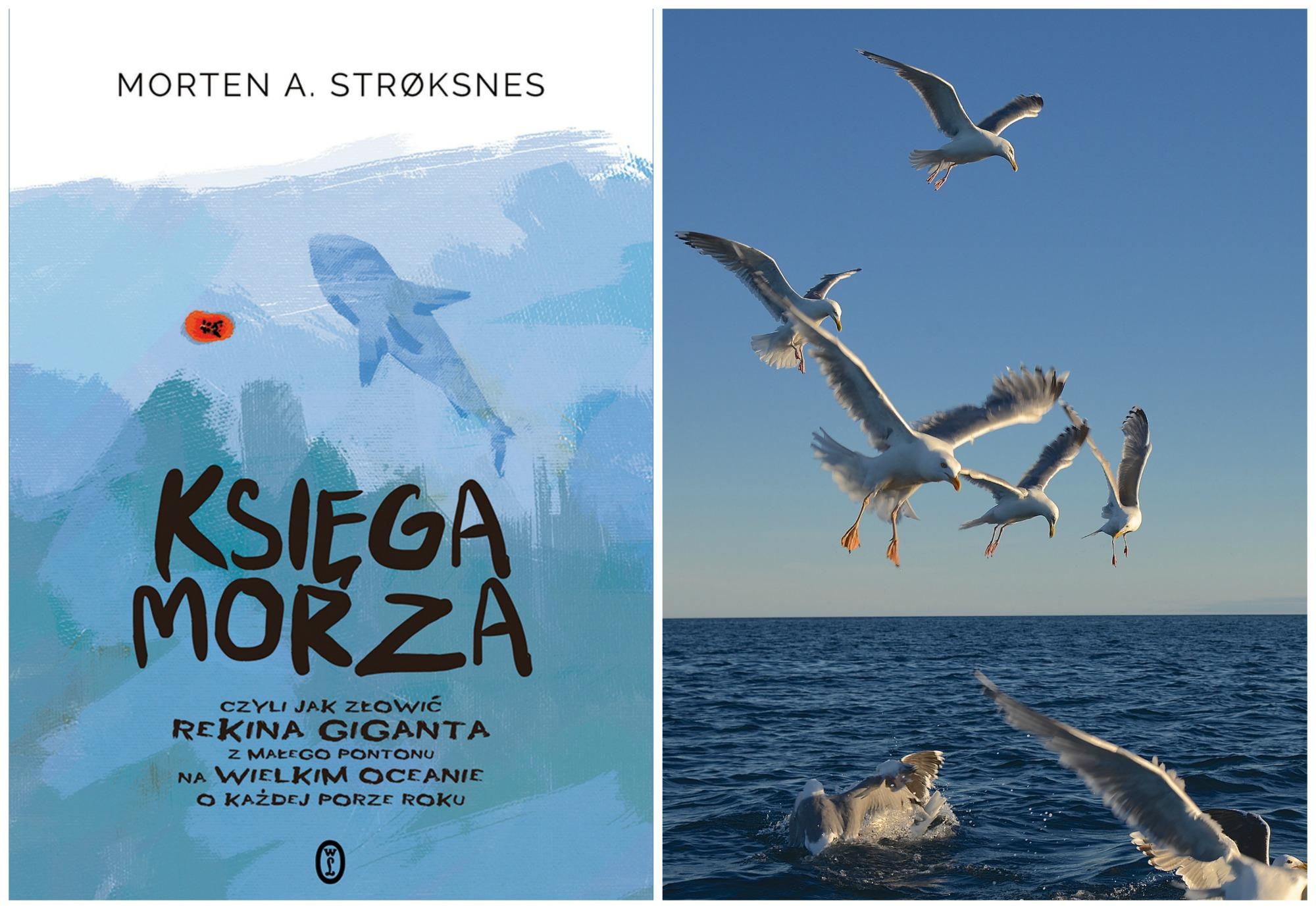 'Księga morza...' w polskim przekładzie ukazała się nakładem Wydawnictwa Literackiego (fot. materiały prasowe / Morten Stroksnes)