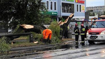 Wichury i burze nad Polską. Setki interwencji w związku z pogodą. Ponad 300 tys. domów bez prądu