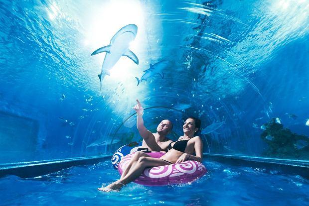 Aquapark w Redzie, Fot. www.aquaparkreda.pl