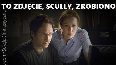 Scully i Mulder oglądają zdjęcie z Polski. Tam bardzo dziwne ujęcie Szydło [MEMY]