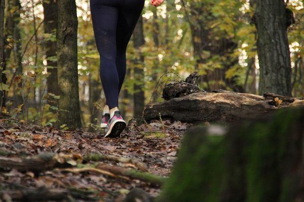 bieganie, teren, trial, las
