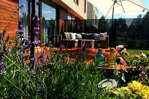 kwiaty, rośliny, ogród, balkon, taras
