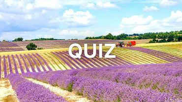 Trzy słowa, jedna kategoria: Polska. Myśleliśmy, że to dość łatwy quiz. A jednak!
