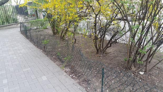 Zniszczone ogrodzenie