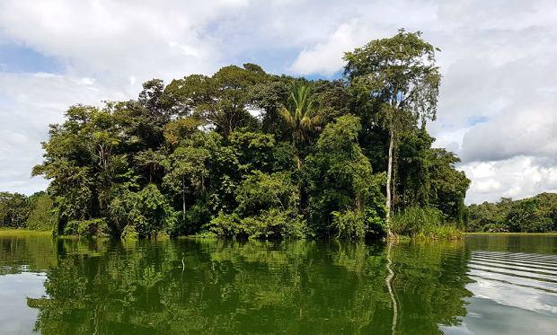 Jezioro Gatun