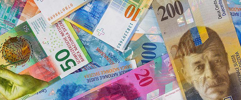 Krótka historia franka w Polsce. Dlaczego w ciągu dekady podrożał o niemal 70 proc.? [NEXT+]
