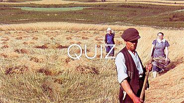 Jeśli nie jesteś rolnikiem, to nie będziesz miał 11/11 z tego quizu. Podejmiesz wyzwanie?