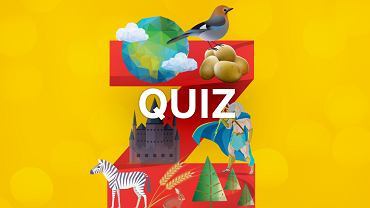 Z: podwójny quiz wiedzy ogólnej. Ten jest ciekawszy i łatwiej w nim o lepszy wynik
