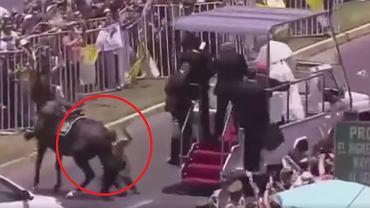 Policjantka spada z konia przed papamobile. Papież rusza z pomocą