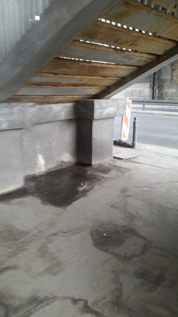 Syf pod mostem